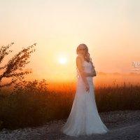 Утро невесты :: Павел Громыко