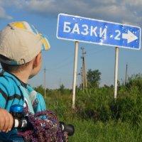 едем домой. :: Елена Ищенко