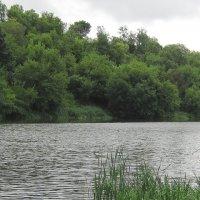 Река Ока.Июль. :: Борис Митрохин