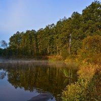 Река Болва :: Руслан Горбачёв