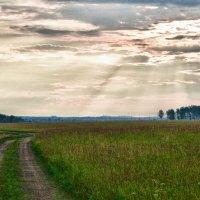 Дорога к дому... :: Светлана Игнатьева