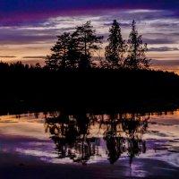 краски природы :: Irina Novikova