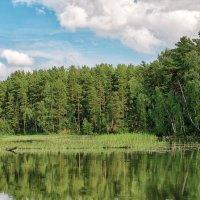 Река малый Чингис :: Дмитрий Конев