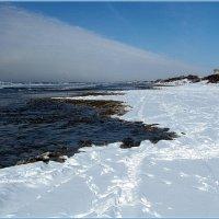 Пляж Черного моря зимой! :: Вера