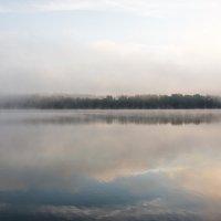 Туман :: Нелли Денисова