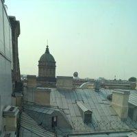 Петербургские крыши :: Марина Домосилецкая
