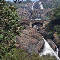 Индия, провинция Гоа, водопад :: Vladimir Lisunov