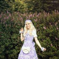 Алиса в Стране чудес... :: Сергей Гутерман