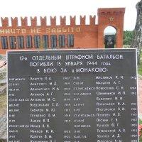 Воинский мемориал в д. Монаково Новосокольнический район Псковская область :: Владимир Павлов