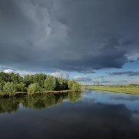 Лосиха-речка :: Виктор Четошников