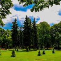 в парке :: Anrijs Slišāns