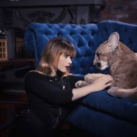 кошки :: Евгения Сызранова