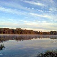 Лесное озеро :: Альберт Казачёк