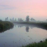 В царстве тумана шагаю по лугу........ :: Павлова Татьяна Павлова