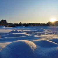 Снежные барханы :: Наталья Якимова