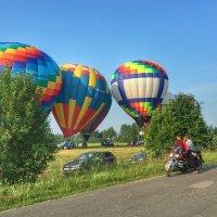 Фестиваль воздухоплавания в Переславле :: Ирина Егорова
