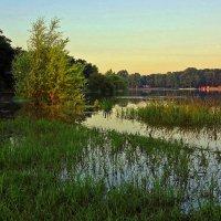 Большая вода на озёрах :: Alexander