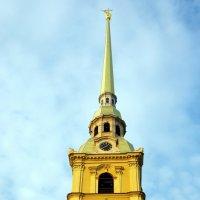 Шпиль Петропавловского собора :: Валерий Новиков