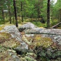 Цветные камни :: Валерий Талашов