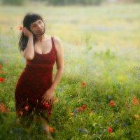 Жасмин и мак :: Анна Шваб