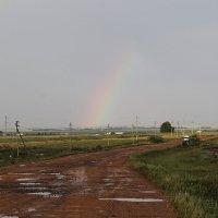 После дождя :: Сергей