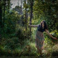 Сказочный лес :: Валерий Саломатин