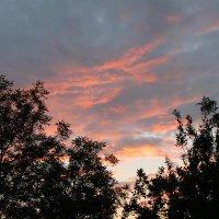Вечерний закат после дождя :: Зарина Vi