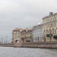 Вид на набережную с Невы. :: Наталья Лунева