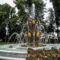 Летний сад. :: Larisa Ereshchenko