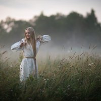 Утро в поле :: Алекс Римский