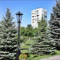 В церковном дворе :: Нина Корешкова