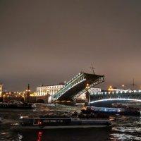 Время разведения мостов. :: Larisa Ereshchenko