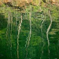 """Картина на воде """"Краски летнего леса"""" :: Аннета /Анна/ Шу"""