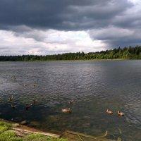 Иверский монастырь (озеро). :: Sergey Serebrykov