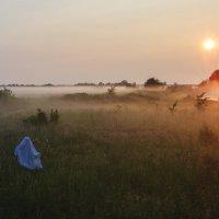 Утренние встречи... :: Фёдор Куракин