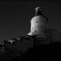 Ночной страж :: galina bronnikova
