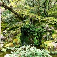 Киото Храм Гинкакудзи :: Swetlana V