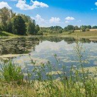 Озеро. :: Виктор Евстратов