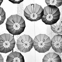 Зонтики :: Anna Lubina