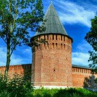 Башня, которой более 500 - сот лет :: Милешкин Владимир Алексеевич