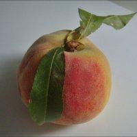 Персик с листочками :: Нина Корешкова