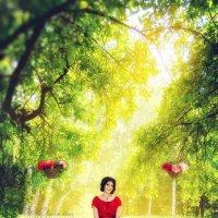 Виолина :: Ангелина Косова