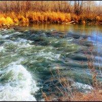 Горная река :: Юрий Фёдоров