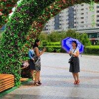 Красавицы Астаны...а просто летний дождь прошёл... :: Галина Стрельченя
