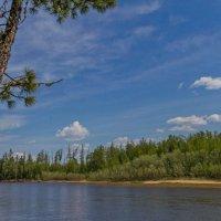 На том берегу реки :: Дмитрий Сиялов