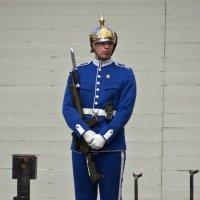 Шведская королевская охрана :: Александр Рябчиков