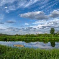 Утром на реке... :: Александр Смирнов