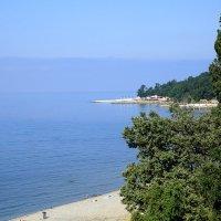 Утренний пляж :: Леонид