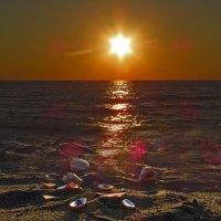 На закате дня :: Наталья Джикидзе (Берёзина)