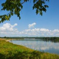 река Бия в районе посёлка Семеновод :: Николай Мальцев